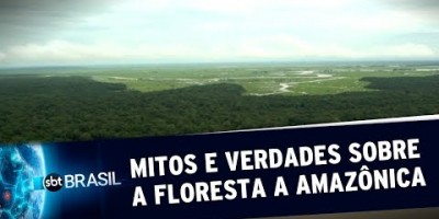 Floresta Amazônica: O que é verdade e o que é mito? | SBT Brasil (24/08/19)
