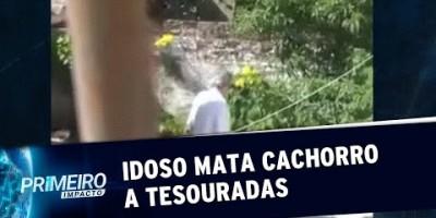 Idoso flagrado matando cão teve ato de insanidade, diz filha | Primeiro Impacto...