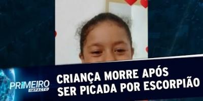 Sem soro em hospital, criança morre após picada de escorpião em SP | Primeiro Impacto...