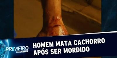 Homem invade casa e mata cachorro a pauladas após ser mordido | Primeiro Impacto...