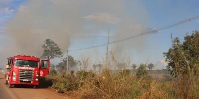 Manifestantes colocam fogo em vegetação e param caminhões por 1h na BR-364 em RO