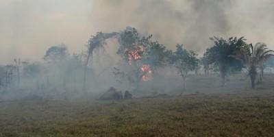 Incêndio em Nova União, RO, devasta 25% de mata; Brasil registra 84 mil pontos de...
