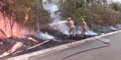 Populares ateiam fogo em mata próximo de Usina Asfalto e Corpo de Bombeiros é acionado...