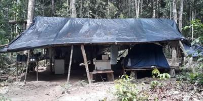 Rondônia registra o primeiro caso de doença de Chagas por transmissão local