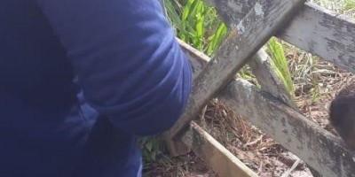Menor é encontrado morto e amarrado a porteira de fazenda em Rondônia