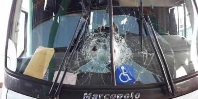 Pássaro atinge pára-brisa de ônibus que ia de Vilhena para Colorado, mas motorista...
