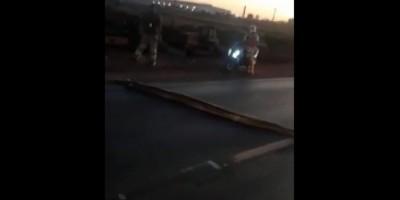 Sucuri de seis metros para trânsito ao atravessar rodovia federal em Cuiabá; vídeo