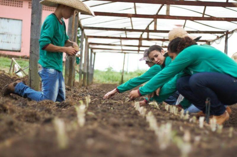 EDUCAÇÃO RURAL: Escola Abaitará oferece formação técnica para jovens de Rondônia