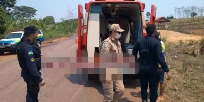 ROLIM DE MOURA: Motociclista fica gravemente ferido após bater em capivara na RO-010