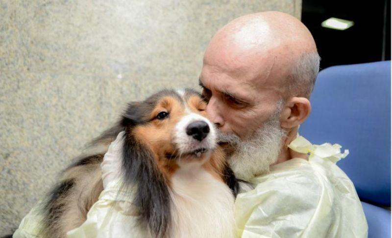 VÍDEO: Paciente com câncer melhora após visita de cão e surpreende médico