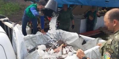 Alta Floresta- Barco, motor, material de pesca e cerca de 681 kg de peixes foram...