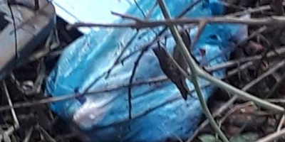 Bebê recém-nascido é encontrado morto nos fundos de terreno baldio