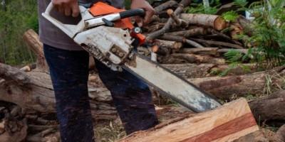 VILHENA: Polícia prende homens furtando madeiras na área rural