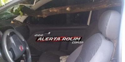 Galho de árvore atravessa para-brisa de carro em acidente na RO-010 em Nova Brasilândia