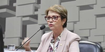 Governo edita MP para regularizar 600 mil posses rurais até 2022