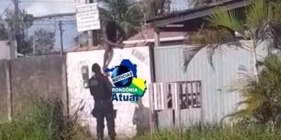 Policiais chegam a tempo e evitam furto em residência em Ji-Paraná; veja o vídeo