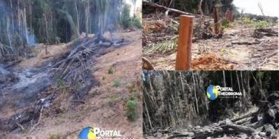 Homem é multado em quase R$ 9 mil por queimada e desmatamento em propriedade rural