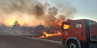 Fogo consome vegetação no bairro Jequitibá em Rolim de Moura; veja o vídeo
