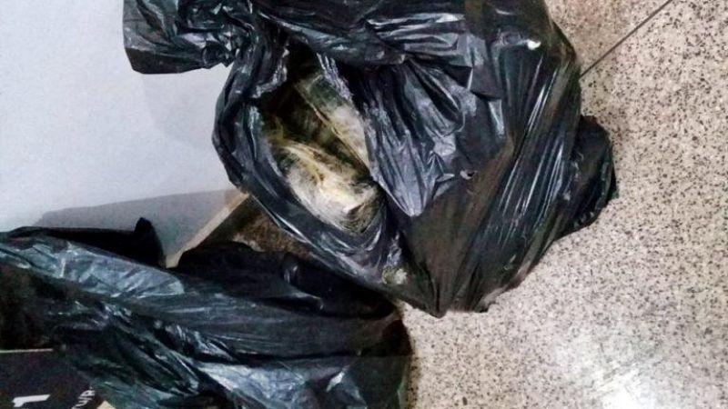 PRF apreende mais de 50 kg de droga em caminhão-cegonha em Jaru; veja o vídeo