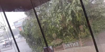 Vendaval causa estragos em Vilhena; veja fotos e vídeos