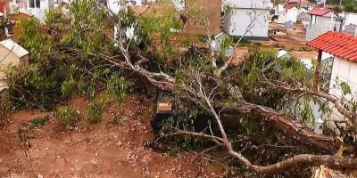 Temporal causa destruição no cemitério São José em Rolim de Moura
