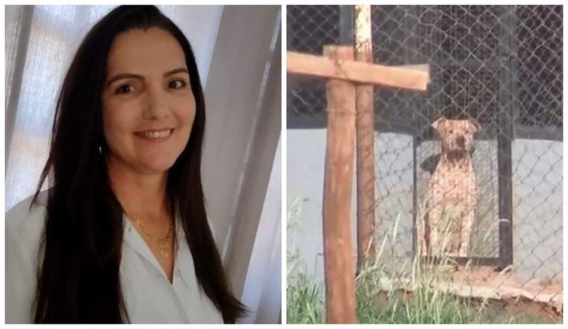 Mulher morre atacada por seis pitbulls ao visitar namorado em chácara no interior de SP