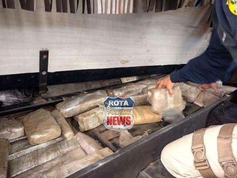 Vilhena: Quase 300 kg de maconha