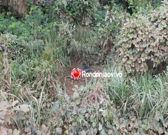 Homem é encontrado em avançado decomposição às margens de estrada em Porto Velho